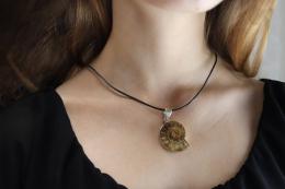 Ammonit in Silber gefasst