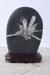 ChrysanthemenSteine