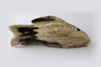 Versteinertes Holz Figur Fisch