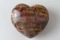 Versteinertes Holz Herz